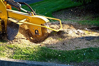 Hire the Experts Who Provide Lot Clearing Services in Ontario