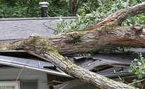 24/7 Emergency Storm Damage Clean-Up